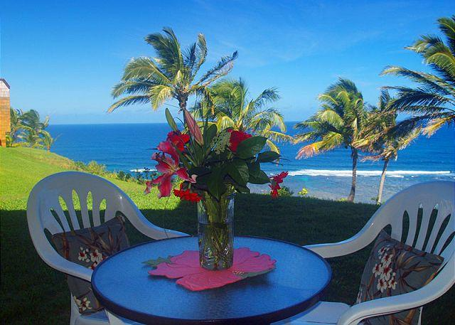 Sealodge J4: Panoramic oceanfront views, tranquil ground floor setting - Image 1 - Princeville - rentals