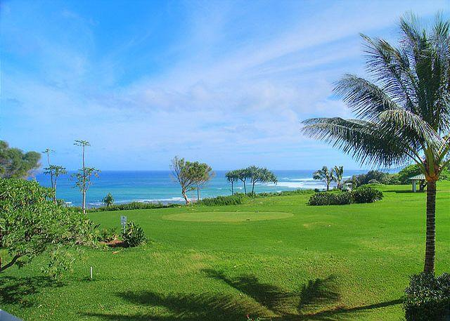 Kamahana 24: Great view and great price!  Near beach paths and golf. - Image 1 - Princeville - rentals