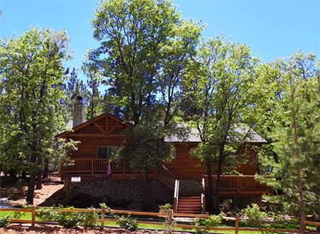 Grey Squirrel Cottage - Image 1 - Big Bear Area - rentals