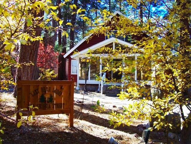 The Lazy Lazy Bear Lodge - Image 1 - Big Bear Lake - rentals