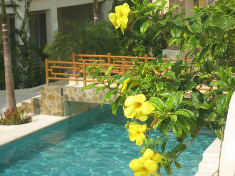 Tropical Casa Anita - Casa  Anita Luxury Tropical Paradise, Ocean Beach - Huatulco - rentals
