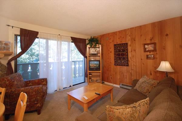 Scandinavian Lodge and Condominiums - SL208 - Image 1 - Steamboat Springs - rentals