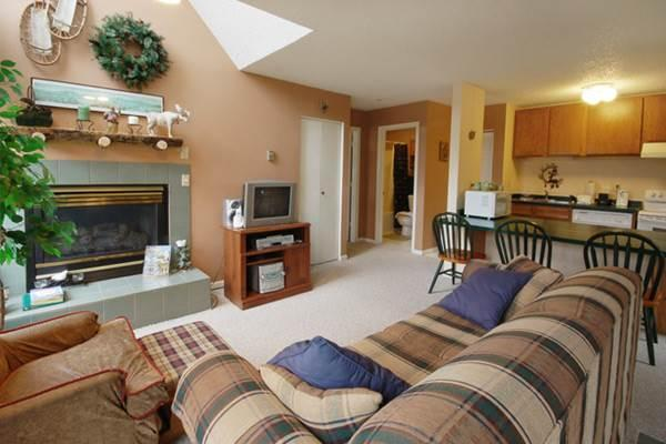 Storm Watch Condominiums - SW212 - Image 1 - Steamboat Springs - rentals