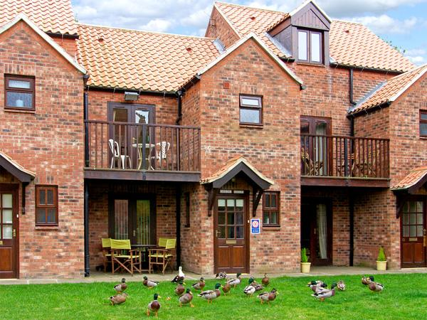 HERONS REACH, pet friendly, with a garden in Whitby, Ref 3627 - Image 1 - Whitby - rentals