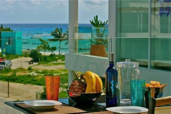 The Elements Penthouse 3 - ELPH3 - Image 1 - Playa del Carmen - rentals