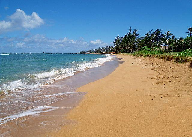 Pono Kai G204: Air-conditioned 1br/1ba with view, steps to beach, bargain!!! - Image 1 - Kapaa - rentals