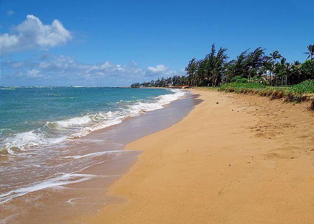 Pono Kai G204: Beach front, air-conditioned, bargain!!! - Image 1 - Kapaa - rentals