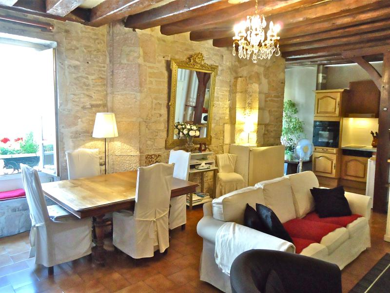 Perfect for a couple of seniors/ family : Roussin apartment a 2 bedroom 1 bathroom - IN PRIME, SAFE AND FRIENDLY QUARTERS OF DIJON - Dijon - rentals