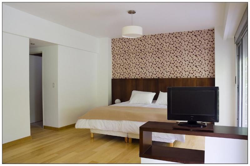 Ultra luxury Studios ApartmentsChe Soho - Image 1 - Buenos Aires - rentals