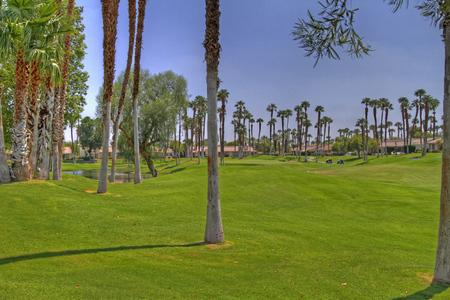 Wonderful Condo in Palm Desert (128PD) - Image 1 - Palm Desert - rentals