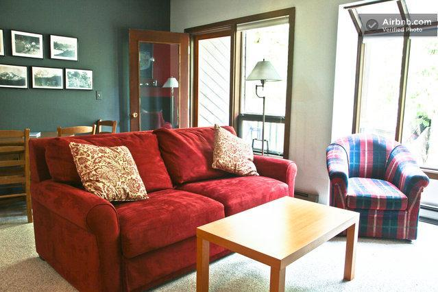 Living Room - Mt. Baker Snowater Resort #203 - Glacier - rentals
