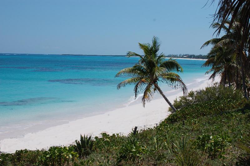 Pristine, Private and Romantic Beach at Bahamas Pura Vida - Beachfront Tropical Villa, Bahamas Pura Vida - Eleuthera - rentals