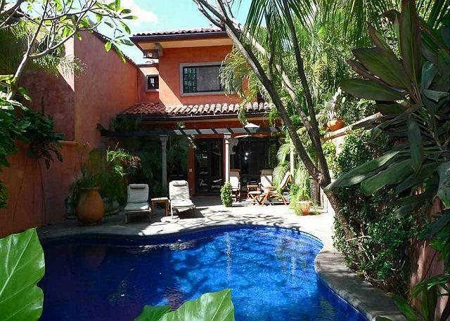 Pool - Private luxury villa- across from beach, private pool, tropical landscaping - Tamarindo - rentals