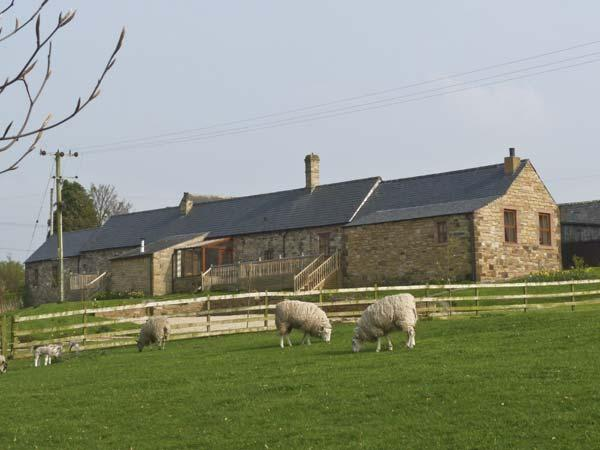 THE STABLE, pet friendly, character holiday cottage, with hot tub in Milton, Ref 3739 - Image 1 - Milton - rentals
