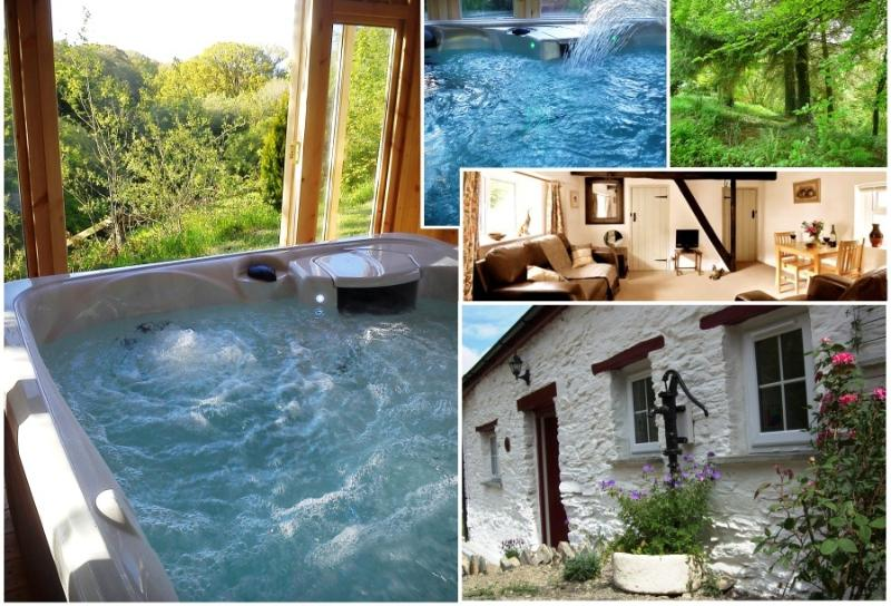 Images of Blaenfforest - Blaenfforest - Holiday Cottages Wales - Newcastle Emlyn - rentals