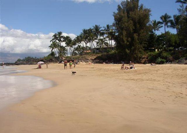 Hale Iliili from Kamaole Beach - Hale Ili Ili #C Kamaole Beach 1 Oceanfront 2/2 - Kihei - rentals
