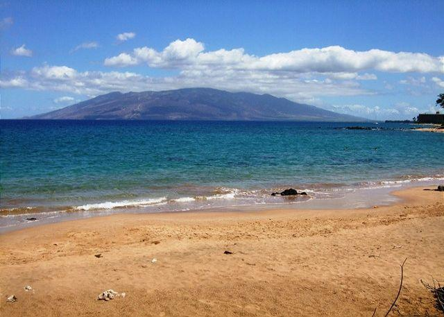 Mokapu Beach , Closest Beach To Wailea Ekolu - Wailea Ekolu #102  2 Bd 2 Bath Sleeps 6  Great Rates!! - Wailea - rentals
