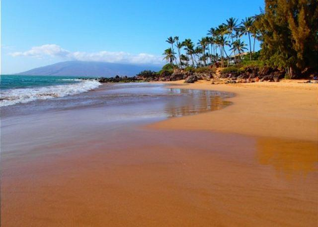 Kamaole Beach I   (Charlie Youngs) - Kihei Alii Kai A305 Closest building to Kamaole Beach #One.  1/1 Sleeps 4! - Kihei - rentals