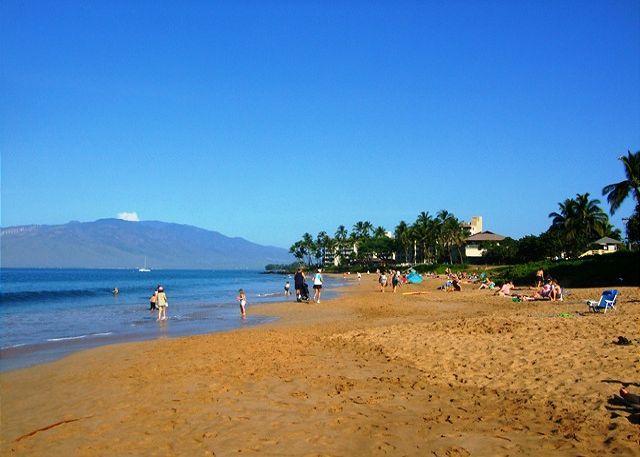 Miles of Sandy Beaches; Kamaole Beaches - Kihei Kai Nani #210 Across From Kamaole Beach #2  Great Rates Sleeps 4 - Kihei - rentals