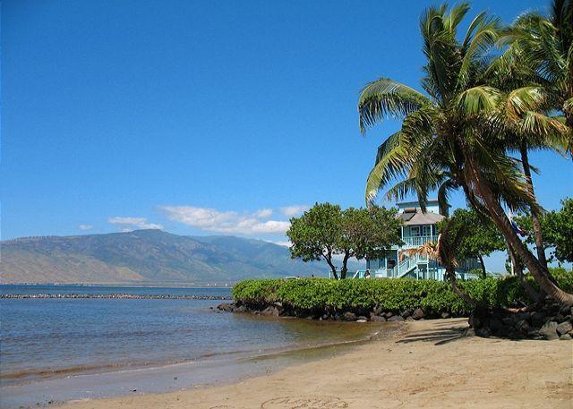 Kalepolepo Beach just across the street from Kihei Bay Surf - Kihei Bay Surf #123 studio great rates! Sleeps 2-3 - Kihei - rentals