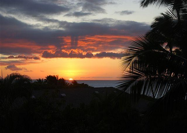 Across from Kamaole Beaches  Kihei Akahi 1 Bd 1 Ba   Great Rates!! - Image 1 - Kihei - rentals