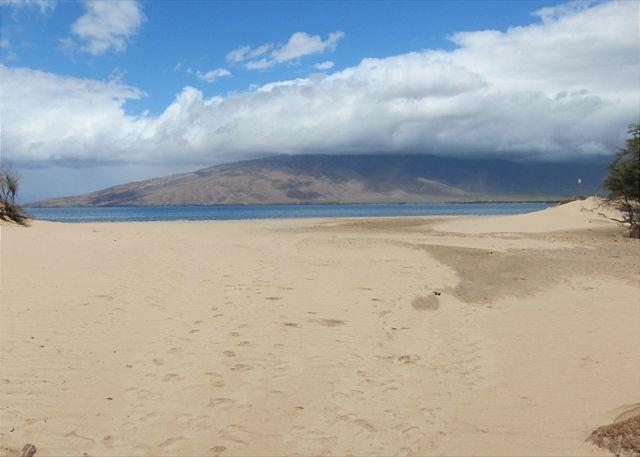 Kihei Bay Vista Just Across From The Beach - Kihei Bay Vista #D-208  Steps from the Beach. Sleeps 4 - Kihei - rentals