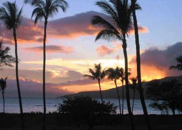 Sunset views From Leinaala #104 - Stop! Look No Further! Leinaala #104 Oceanfront Ocean View 1Bd/1Ba Sleeps 4 - Kihei - rentals