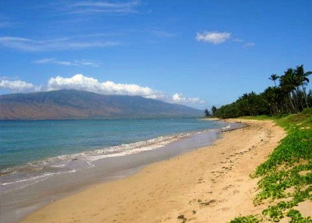 Beach fronting  Waiohuli Beach Hale - Waiohuli Beach Hale #C-111 Lovely 2bdrm 2ba Remodled Unit  Great Rates! - Kihei - rentals
