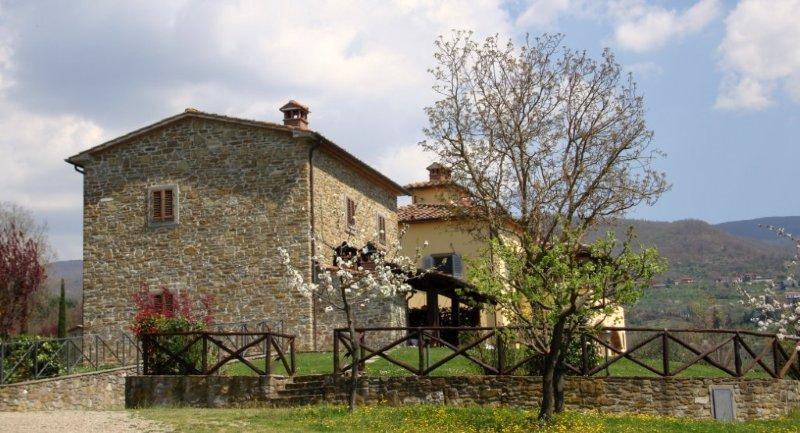 Villa Rental in Tuscany, Subbiano - Villa Andreina - 14 - Image 1 - Subbiano - rentals