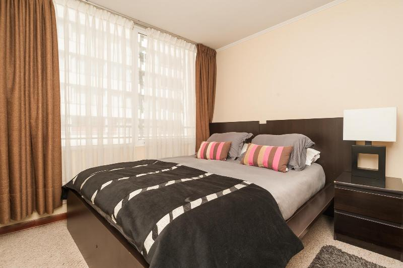 Home from Home 1 - bedroom - Vacation Apartments in the heart of Santiago Chile - Santiago - rentals