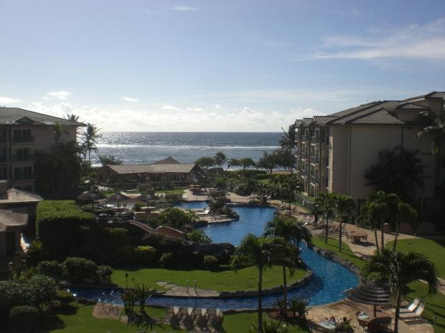 Always something to see - CROWN JEWEL LUXURY OCEANVIEW PENTHOUSE! D406 - Kapaa - rentals
