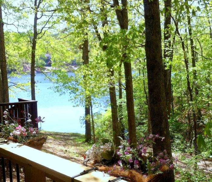 Enjoy the lake and forest view from the covfered deck! - Woodland Cove Lakeview Apartment at Lake Coronado! - Hot Springs Village - rentals