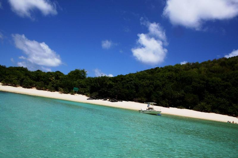 Wild Life Refuge Cayo Luis Pena Beach.. - Pelicano Oceanfront /$175-$995/nt, Cap 2-18 guests - Culebra - rentals