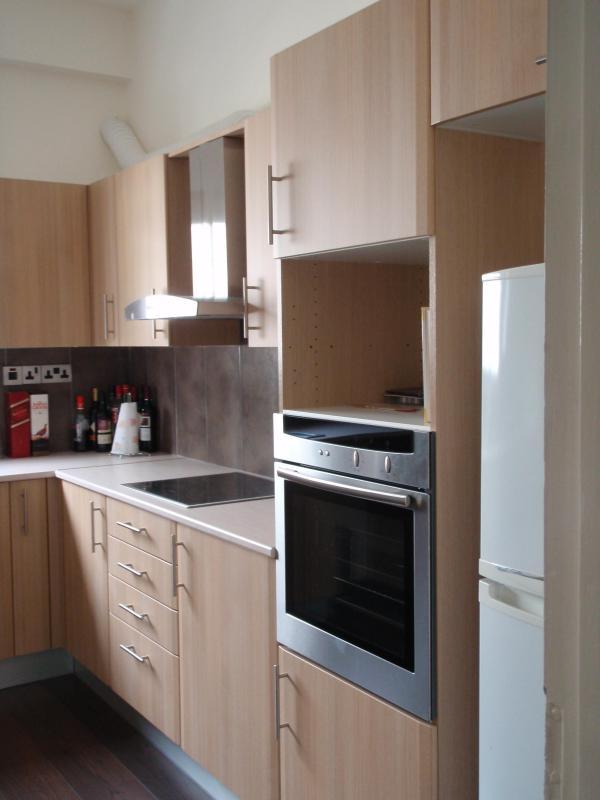 kitchen - Spacious short term let flat, Nicosia, Cyprus - Nicosia - rentals