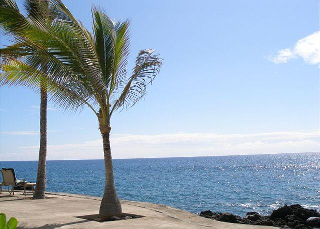View from the Ocean Front Complex - Surf & Racquet Club 37-SR 37 - Kailua-Kona - rentals