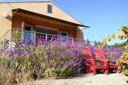 Terrace with view - Modern Sophisticated Private Views & Hot Tub - Healdsburg - rentals