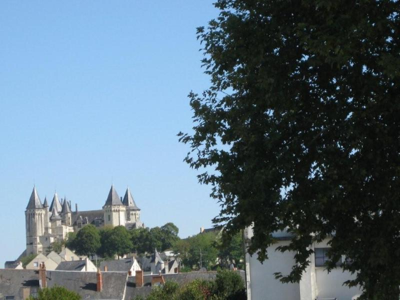 View from the windows - Saumur - Pays de la Loire. 2 rooms furnished flat - Saumur - rentals