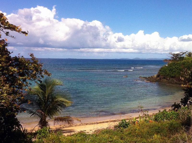 "Beach in front of Las Olas - ""LAS OLAS"" 100 feet to a beach cove... - Isla de Vieques - rentals"
