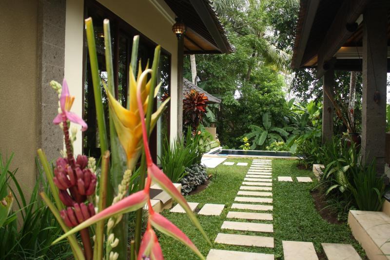 View to the Pool - Elysium Fields Bali - Canggu, near Echo Beach - Canggu - rentals