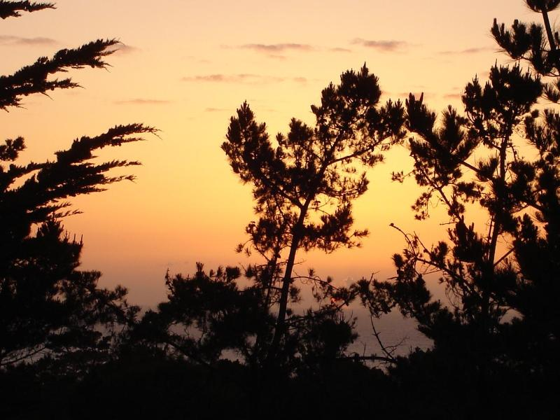 Sunset View over the Ocean. This Spacious Vacation Home has great views from just about every room! - Peaceful Vacation Sanctuary - Ocean & Forest Views - Pebble Beach - rentals