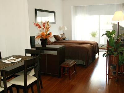 Deluxe Studio Apartment in Upscale Palermo Chico with Pool, Gym, Sauna (ID#55) - Image 1 - Buenos Aires - rentals