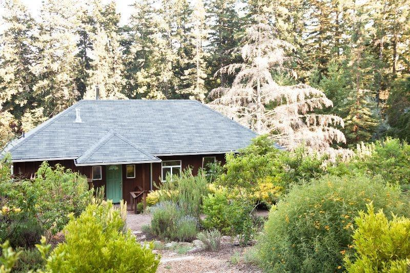 Lavender Cottage - Lavender Cottage in Wine Country Near Sonoma Coast - Sebastopol - rentals