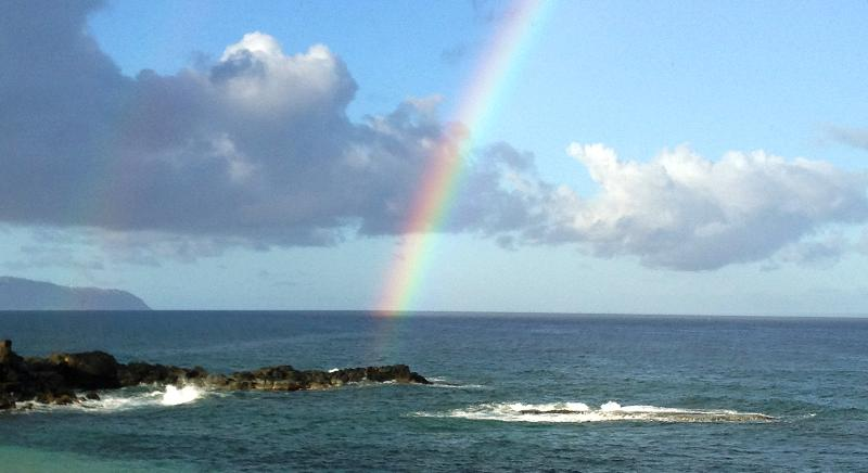 View at Beach Across Street - New Contemporary Renovation - Perfect Location - Haleiwa - rentals