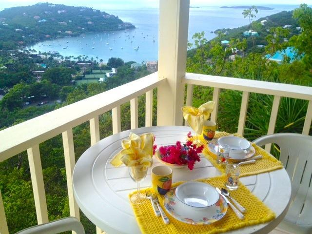 "Tropical Orchid VIEW  Your Patio - ""JUST FOR TWO"" spectacular Vi - Cruz Bay - rentals"