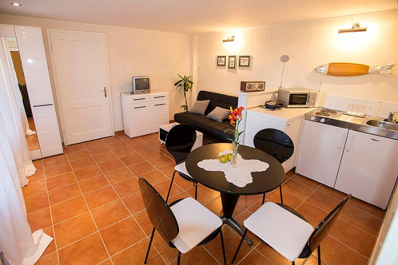 Spacious living room with kitchen - Zagrebek Apartments in strict city center - Zagreb - rentals