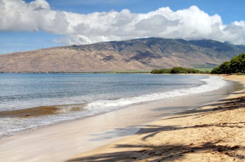SUGAR BEACH RESORT, #121 - Image 1 - Kihei - rentals