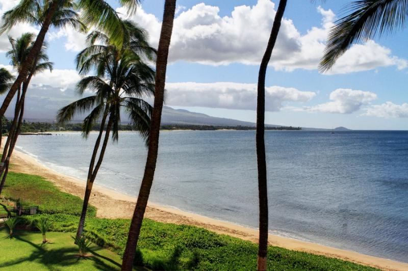 SUGAR BEACH RESORT, #330* - Image 1 - Kihei - rentals