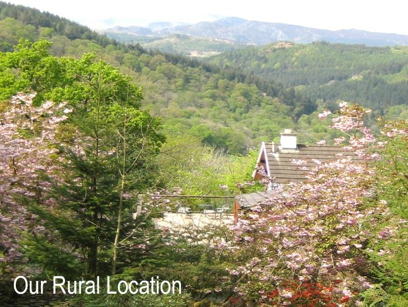 Our house in the garden overlooking Snowdonia - ! A Country Garden House in Snowdonia - Betws-y-Coed - rentals