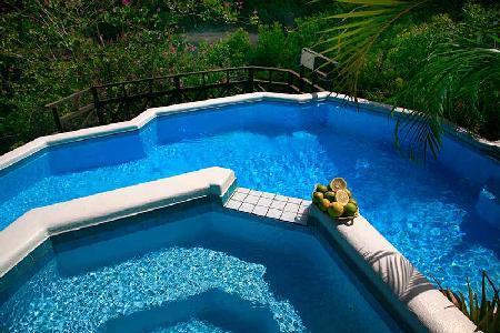 Trouya - Villa near Trouya beach with pool & water sports activities nearby - Image 1 - Bois d'Orange - rentals