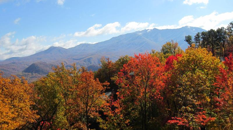 Autumn view of Mt.LeConte from the main deck - Beautiful Mountain Views, 2 Kings+, WIFI & More! - Gatlinburg - rentals